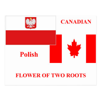 Polish-canadian Postcard