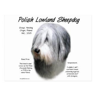 Polish Lowland Sheepdog History Design Postcard