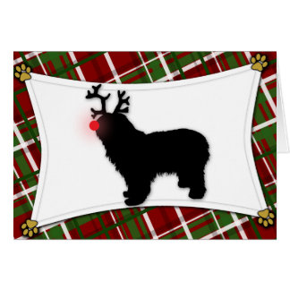 Polish Lowland Sheepdog Reindeer Christmas Card