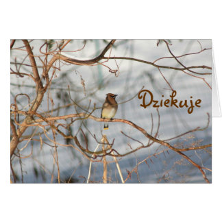 Polish Wildlife Nature Photo Thank You Card