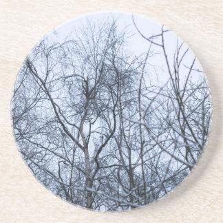 Pollock's Branches Coaster