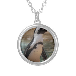 Polly Silver Plated Necklace