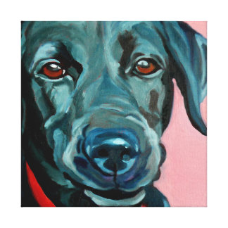Polly the Black Labrador Retriever Dog Portrait Canvas Print