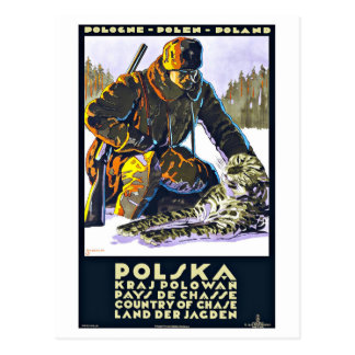 Polska Poland Vintage Travel Postcard
