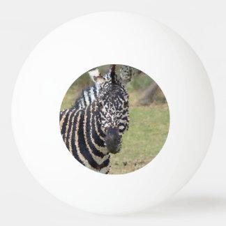Poly Animals - Zebra Ping Pong Ball