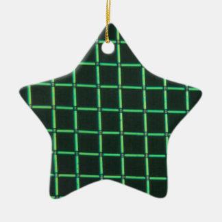 Polylactic acid under the microscope ceramic star ornament