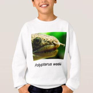 Polypterus weeksii sweatshirt