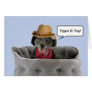 Pom-a-Poo Dog Wearing Cowboy Hat Focus for a Cause Greeting Card