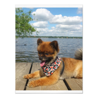 pom pup on dock.png magnetic invitations