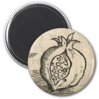 Pomegranate 2 Inch Round Magnet