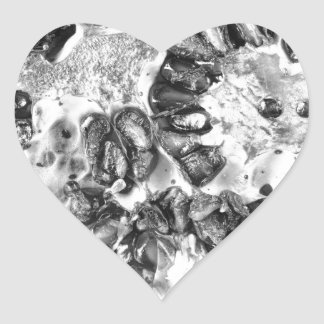 Pomegranate in Black and White Heart Sticker