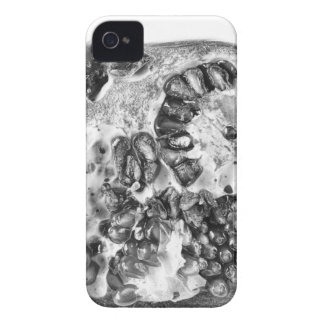 Pomegranate in Black and White iPhone 4 Cover