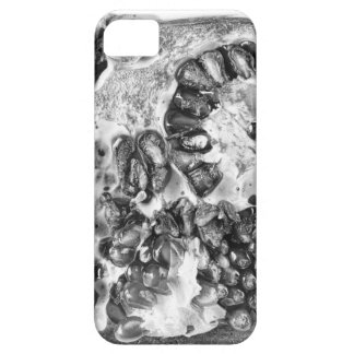 Pomegranate in Black and White iPhone 5 Case