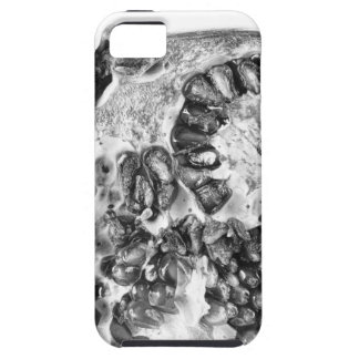 Pomegranate in Black and White iPhone 5 Cover