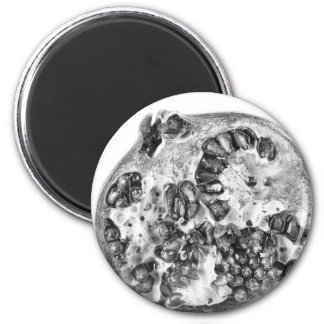 Pomegranate in Black and White Magnet