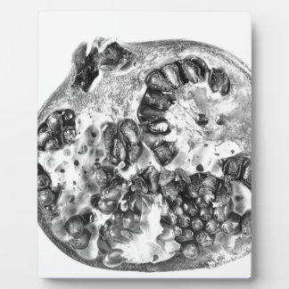 Pomegranate in Black and White Plaque