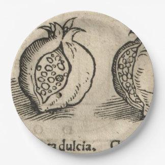 Pomegranate Paper Plate