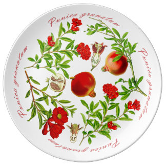 Pomegranate Platter (You can customize) Plate