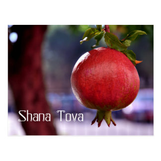POMEGRANATE  ROSH HASHANAH editable text Postcard