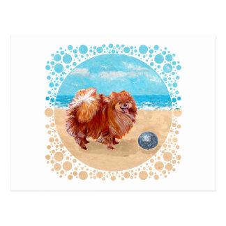 Pomeranian at the Seashore Post Cards
