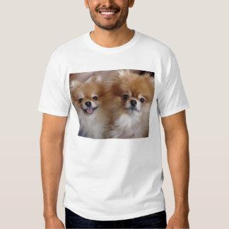 Pomeranian Buddies T-shirts