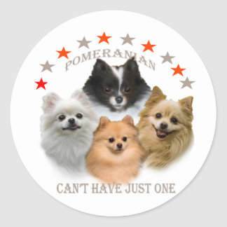 Pomeranian Can't Have Just One Classic Round Sticker