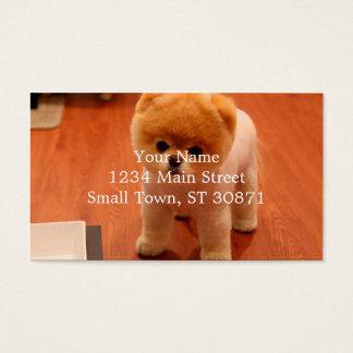 Pomeranian-cute puppies-spitz-pom dog-pom puppies business card