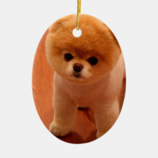 Pomeranian-cute puppies-spitz-pom dog-pom puppies ceramic ornament