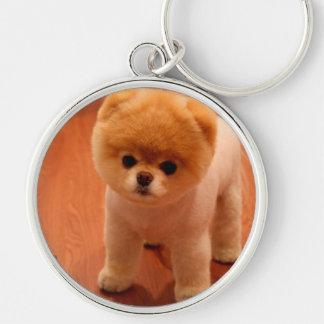 Pomeranian-cute puppies-spitz-pom dog-pom puppies keychain