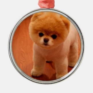 Pomeranian-cute puppies-spitz-pom dog-pom puppies metal ornament