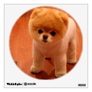 Pomeranian-cute puppies-spitz-pom dog-pom puppies wall sticker