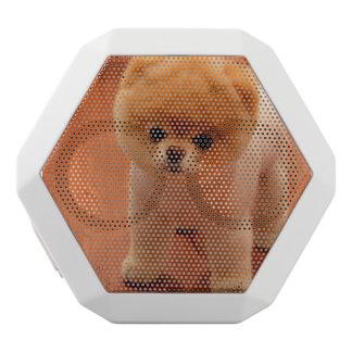 Pomeranian-cute puppies-spitz-pom dog-pom puppies white bluetooth speaker