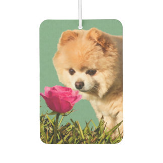 Pomeranian Dog and Rose Car Air Freshener