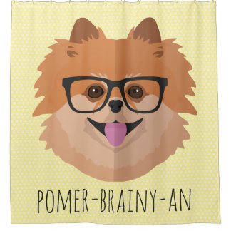 Pomeranian Dog In Nerd Glasses | POMER-BRAINY-AN