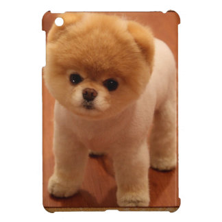 Pomeranian Dog Pet Puppy Small Adorable baby iPad Mini Cases