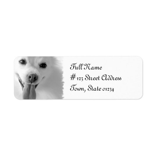 Pomeranian Dog Return Address Mailing Label