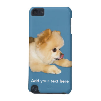 Pomeranian Dog Sticking Tongue Out iPod Touch (5th Generation) Cover
