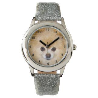 Pomeranian Dog Watch