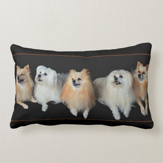Pomeranian Dogs on Lumbar Throw Pillow