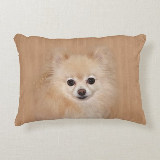 Pomeranian face decorative pillow