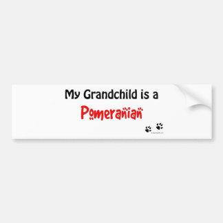 Pomeranian Grandchild Bumper Sticker