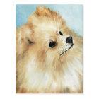 """Pomeranian Head Study Dog Art Postcard"
