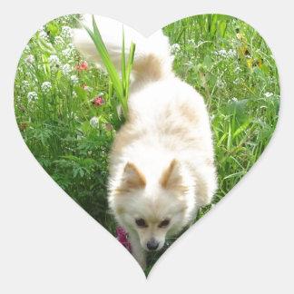 Pomeranian Heart Sticker