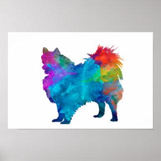 Pomeranian in watercolor poster