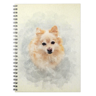 Pomeranian lovers notebook! Ginger Pomeranian Dog Notebook
