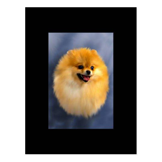 Pomeranian Portrait ACEO Art Trading Card