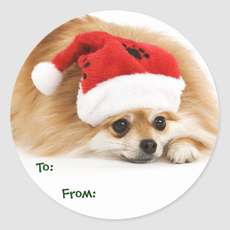 Pomeranian Puppy Gift Tags