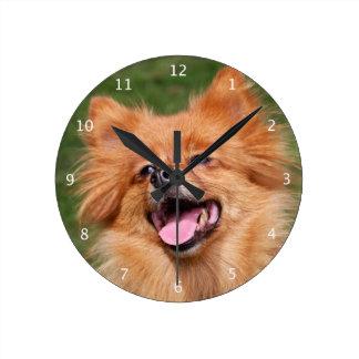 Pomeranian Spitz dog cute beautiful photo Clock