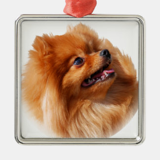Pomeranian Spitz Metal Ornament