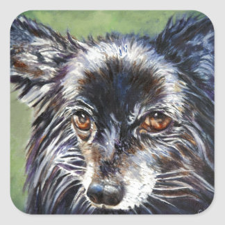 Pomeranian Square Sticker